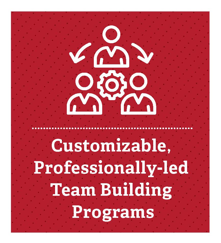 Customizable, professionally-led team building programs
