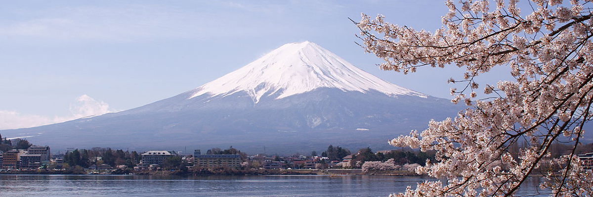 Mount Fuji with Cherry Blossems