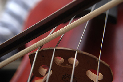 Closeup of cello and bow near bridge