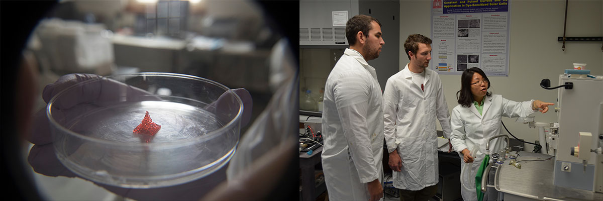 Petri dish and faculty in lab