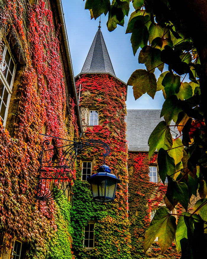 The Luxembourg campus chateau covered with red leafy vines on a sunny day