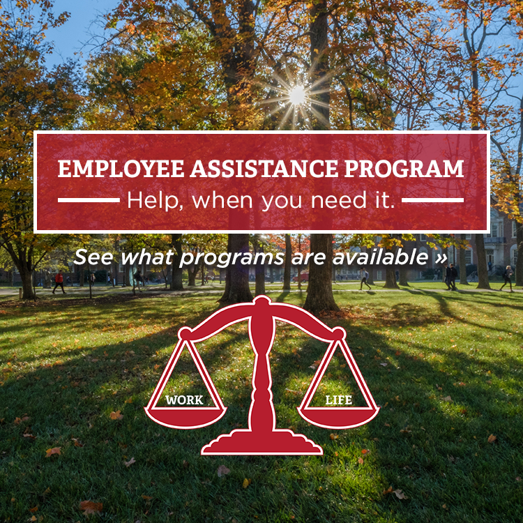 Employee Assistance Program, Help when you need it, See what is available