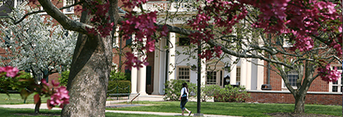 Campus in the springtime