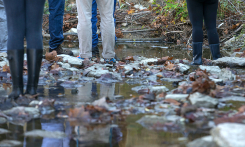 students walking in the creek in peffer park