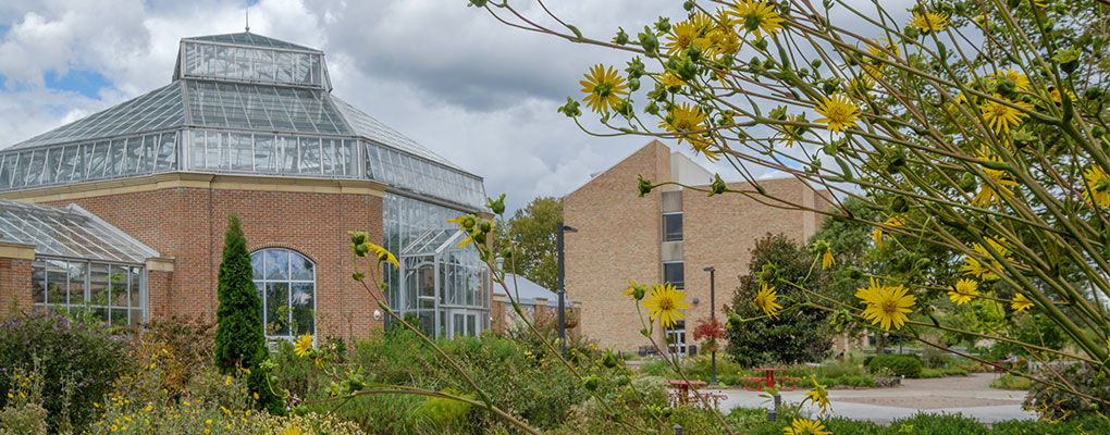Exterior of the conservatory with yellow flowers
